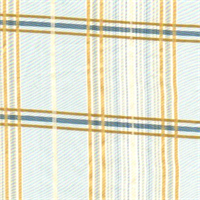 Check 6-Spa Plaid Faux Silk Fabric