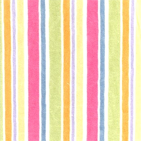 Multi Color Multi Stripes
