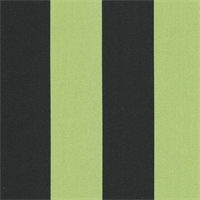 Deck Stripe - Black/Lime Indoor/Outdoor Fabric