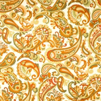Pottery Paisley Fabric by Jaclyn Smith 01829
