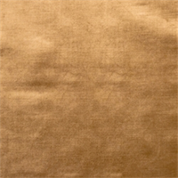 Golden Velvet Fabric by Jaclyn Smith 01837