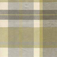 Donnyglen Citrine Plaid Drapery Fabric by Robert Allen
