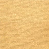 Amber Faux Silk Drapery Fabric by Trend 01990T