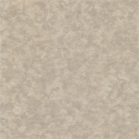 Shadow Deck 702 Tan Outdoor Fabric 30 yard bolt