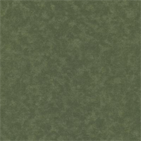 Shadow Deck 611 Sage Outdoor Fabric 30 yard bolt