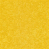 Shadow Deck 502 Yellow Outdoor Fabric 30 yard bolt