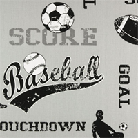 Sports Storm Twill by Premier Prints - Drapery Fabric