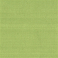 TAF-542 Luster Taffeta Kiwi Solid Drapery Fabric by Roth and Tompkins