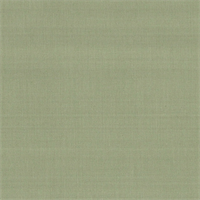 TAF-547 Luster Taffeta Fern Solid Drapery Fabric by Roth and Tompkins
