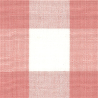 DL02 Lyme Rose Check Drapery Fabric by Roth and Tompkins