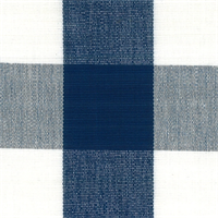 DL06 Lyme Royal Check Drapery Fabric by Roth and Tompkins