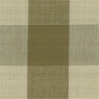 DL08 Lyme Tobacco Check Drapery Fabric by Roth and Tompkins