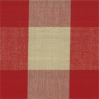 DL20 Lyme Berry/Natural Check Drapery Fabric by Roth and Tompkins