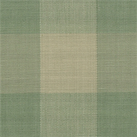 DL32 Lyme Sage Check Drapery Fabric by Roth and Tompkins