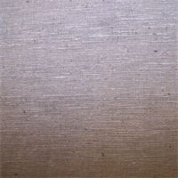 D420 Natural Raw Silk Drapery Fabric