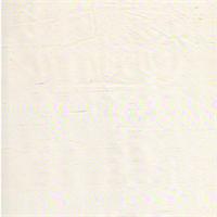 D1-1 Dupioni Plain Silk Ivory Drapery Fabric