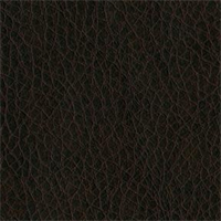 Texas 8019 Brown Solid Vinyl Fabric