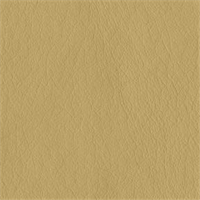 Texas 6003 Chamois Tan Solid Vinyl Fabric