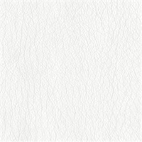 Texas 66 White Solid Vinyl Fabric