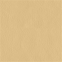 Austin 6003 Cream Ivory Solid Vinyl Fabric