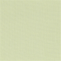 Cumberland Mist Green Woven Solid Fabric