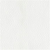 Turner 3882 White Solid Vinyl Fabric