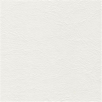 Midship 61 Mystic White Solid Marine Vinyl Fabric