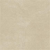 Midship 649 Almond Solid Marine Vinyl Fabric