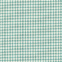 Gingham Pool Printed Drapery Fabric