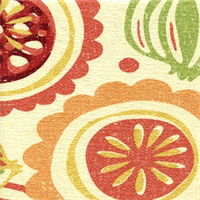 Handblock Melon 100% Cotton Basketweave Drapery Fabric by Richloom Platinum Fabrics