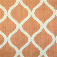 DNA Tangerine Embroidered Drapery Fabric by Swavelle Mill Creek