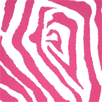Zebra Preppy Pink Indoor/Outdoor Print by Premier Prints