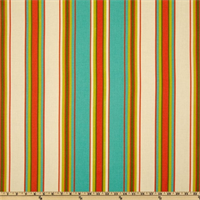 Beckett Parakeet Stripe Drapery Fabric by Swavelle Mill Creek