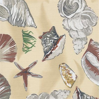 Sea Shells Sand Indoor/Outdoor Fabric
