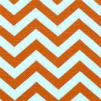 Zig Zag Tangelo/Slub Stripe Premier Print Drapery Fabric