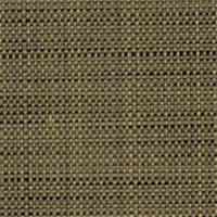 Texturetake Sepia Upholstery Fabric by Robert Allen