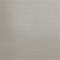 Crocodile Vinyl Chalk White