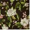Collinson Graphite Floral Cotton Drapery Fabric