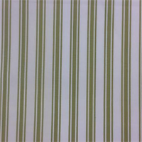 Breton Rally Pistachio Cotton Stripe Drapery Fabric by Swavelle Mill Creek