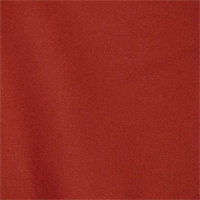 Stellar Spice Solid Cotton Drapery Fabric by Robert Allen