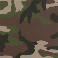 Camo Camo Indoor/Outdooor Camouflage Upholstery Fabric