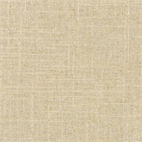 Tip Top Sand Linen Solid Drapery Fabric by Swavelle Mill Creek