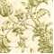 Fausta Cliffside Green Tea By Swavelle/Mill Creek Drapery Fabric - Order a Swatch