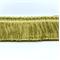 SAV7-C Pistachio Brush Fringe - Order a Swatch