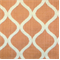 DNA Tangerine Embroidered Drapery Fabric by Swavelle Mill Creek - Order a Swatch