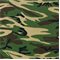 Cammo Forest Green Drapery Fabric by Premier Prints - Order a Swatch
