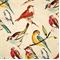 Birdwatcher Meadow Drapery Fabric by Richloom  - Order a Swatch