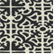 Pateire Ebony Cotton Spiderweb Design Drapery Fabric - Order a Swatch