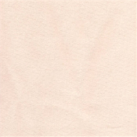 Supa Duck Ivory Drapery Fabric - 20 Yard Bolt
