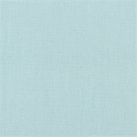 Stellar Cove Solid Cotton Drapery Fabric by Robert Allen  - Order a Swatch